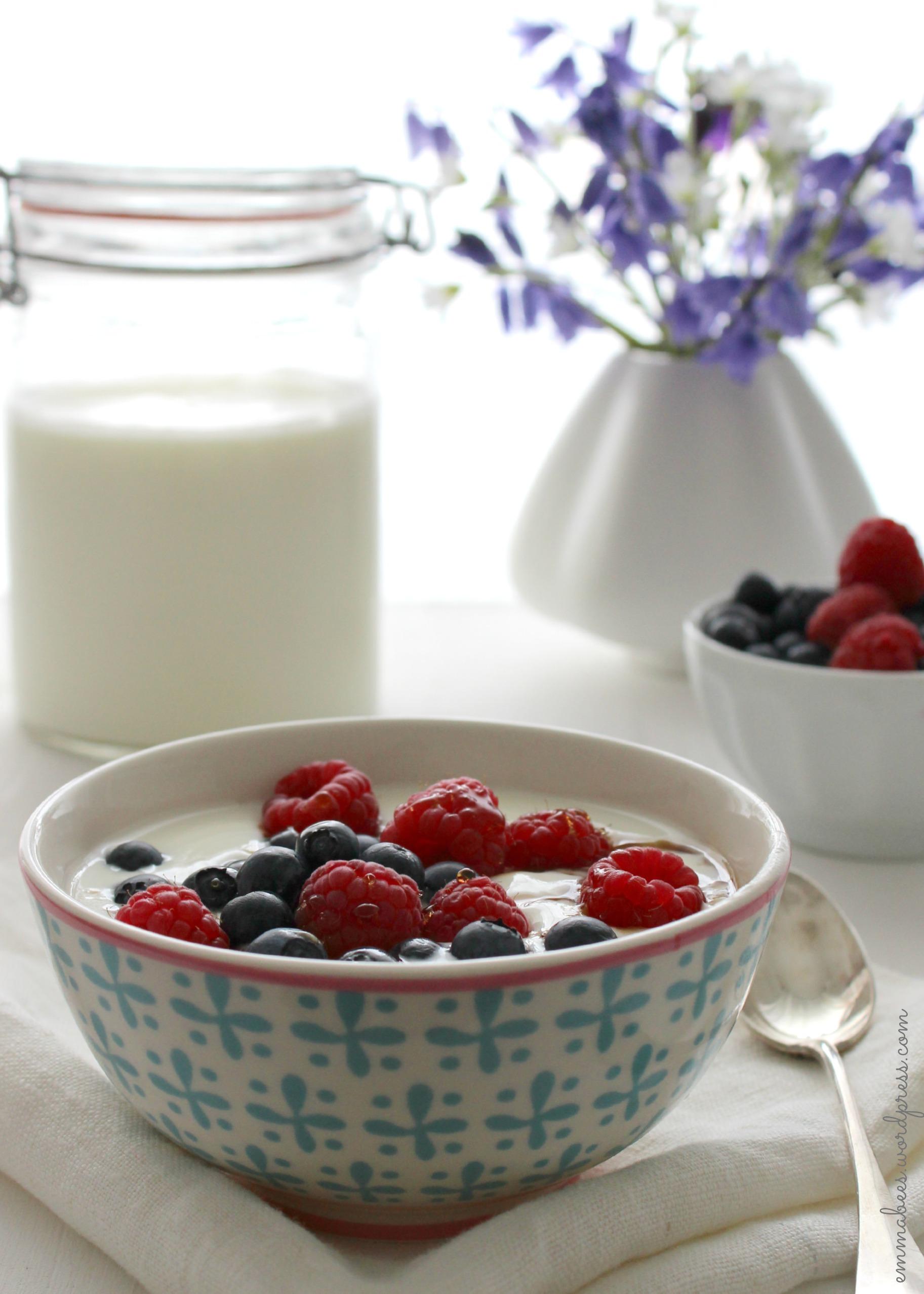 EmmaBee.Joghurt5