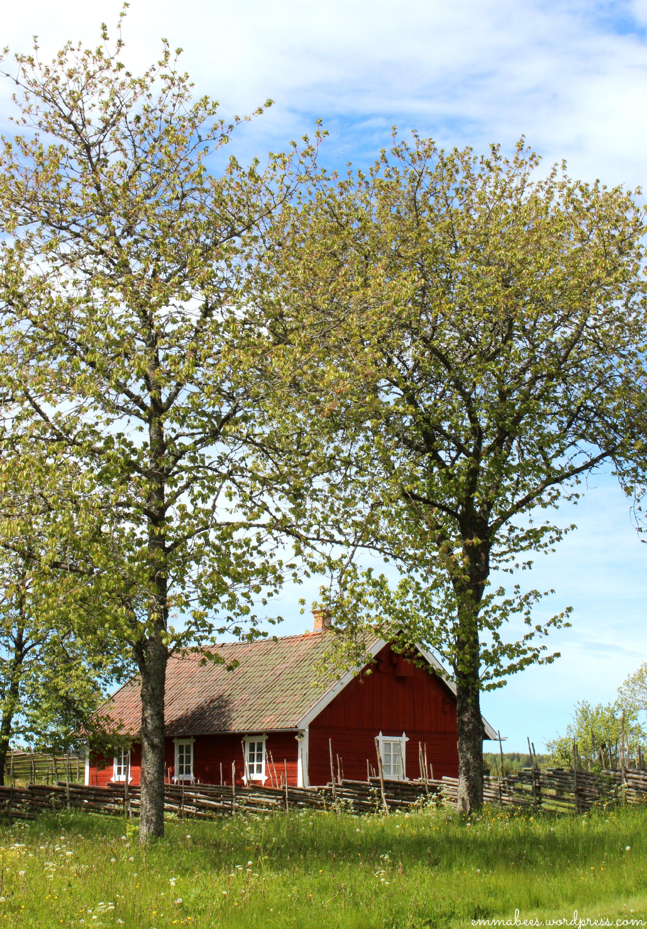 EmmaBee.Schweden23