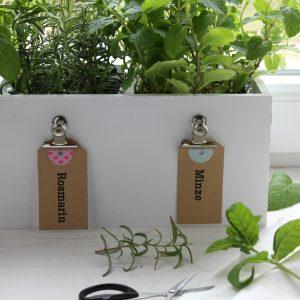EmmaBee DIY Bio-Kräuter